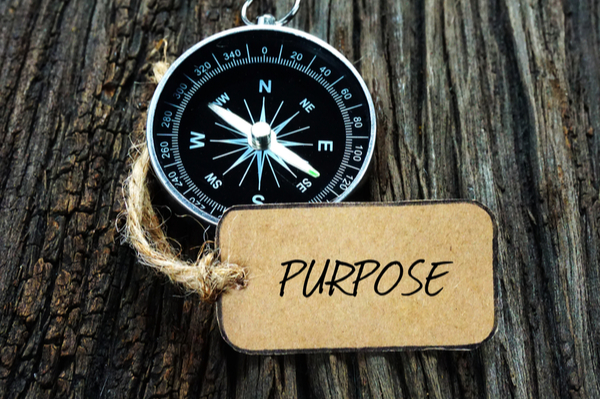 Critical Reflections: Social Purpose and the Bottom Line